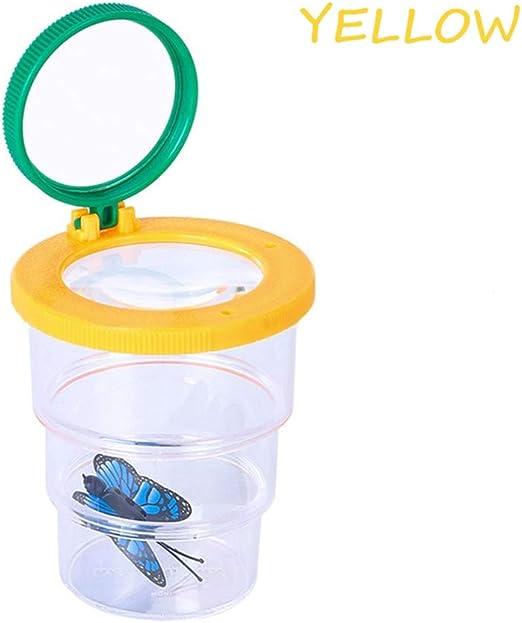 CHUANGQI Caja de visualización de Insectos, observación biológica ...