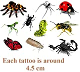 Insects 3D Temporary Tattoos …