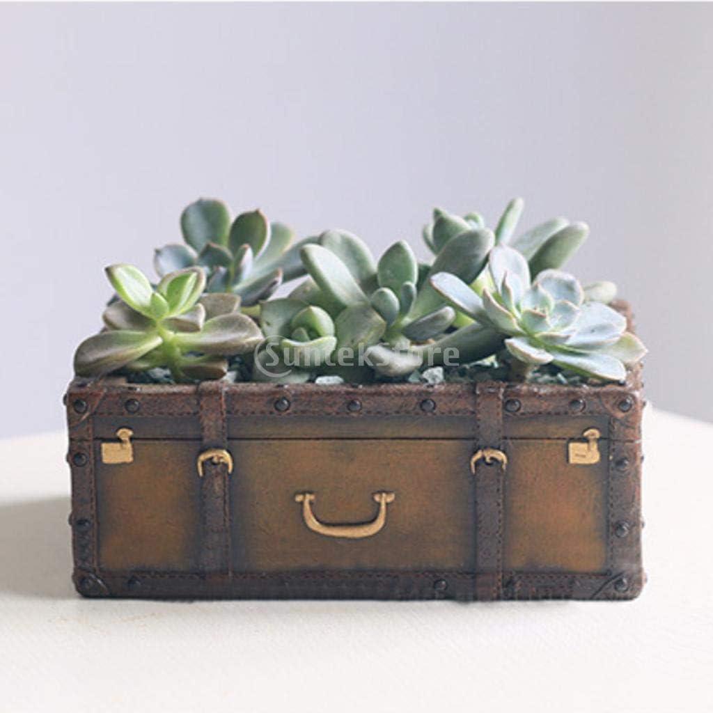 Home Garden Flower Herb Planter Succulent Pot Trough Box Plant Bed Case Bonsai