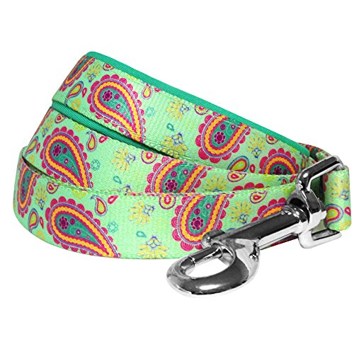 Blueberry Pet 5 Colors Spring Paisley Flower Print Dog Leash with Soft & Comfortable Handle, 5 ft x 5/8