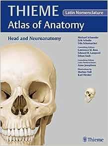 Thieme atlas of anatomy head and neuroanatomy