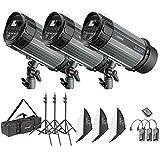 Neewer 750W Studio Strobe Flash Photography Lighting Kit:(3)250W Monolight,(3)Softbox,(3)Light Stand,(1)RT-16 Trigger,(1)Carrying Bag for Video Portrait Location Shooting(N-250W)