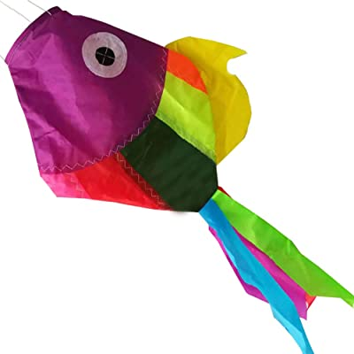 Featured Gifts Rainbow Fish Windsock Spinner Spiral 30-inch, Flight Outdoor Kite Toys Kids Spring Park Garden Decor(Random Color): Toys & Games