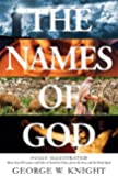 Names of God: Fully Illustrated--More Than 250 Names and Titles of God the Father, Jesus the Son, and the Holy Spirit