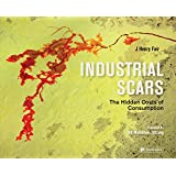 Industrial Scars: The Hidden Costs of Consumption