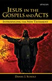 Jesus in the Gospels and Acts: Introducing the New Testament