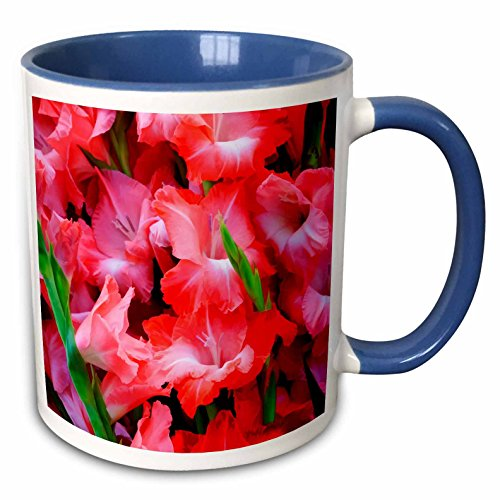 3dRose Danita Delimont - Joanne Wells - Flowers - USA, Georgia, Savannah, Bouquet of gladiolus at Farmers Market. - 11oz Two-Tone Blue Mug (mug_191142_6) (Farmers Market Mug)