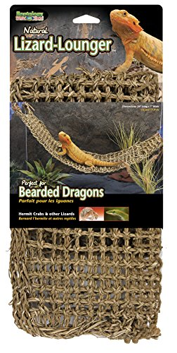 Penn Plax Lizard Lounger, 100% Natural Seagrass Fibers For Anoles, Bearded Dragons, Geckos, Iguanas, and Hermit Crabs Rectangular 7 x 29 - Iguana Branch