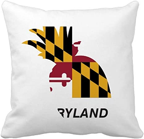 Offbb Usa State Flag Outlines Maryland Pineapple Throw Pillow Square Cover Home Kitchen