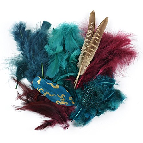 Touch of Nature 38992 Packed Feather Assortment for Arts and Crafts, 7gm, Teal/Wood/Jasper -
