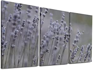 Lavender Nature Plant Flowers Purple Garden Herbs Ready to Hang Kitchen for Home Decor Wood Framed Wall Art Canvas Prints 16x24 Inch x3 Pcs