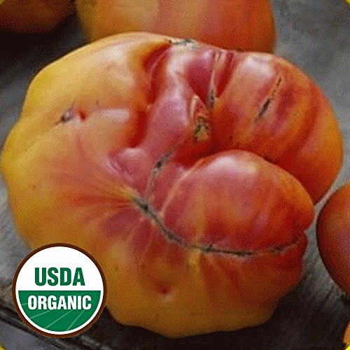 Everwilde Farms - 1 Oz Organic Old German Heirloom Tomato Seeds - Gold Vault Packet ()