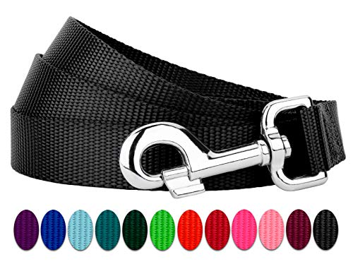Country Brook Design | 6ft by 1 Inch Heavyduty Doublehandle Nylon Leash - Black