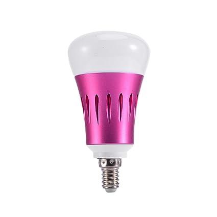 ZREAL Smart Bombilla LED E27/e14/B22 WiFi Control Cambio de color Bombillas para