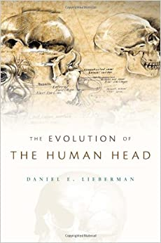 image for The Evolution of the Human Head
