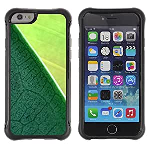 Lady Case@ Plant Nature Forrest Flower 9 Rugged Hybrid Armor Slim Protection Case Cover Shell For iPhone 6 Plus CASE Cover ,iphone 6 5.5 case,iPhone 6 Plus cover ,Cases for iPhone 6 Plus 5.5