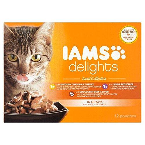 iams wet kitten food - 8