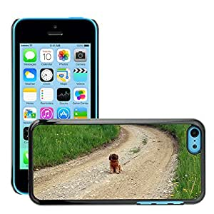 Hot Style Cell Phone PC Hard Case Cover // M00115177 Away Lane Nature Trail Dog Sitting // Apple iPhone 5C