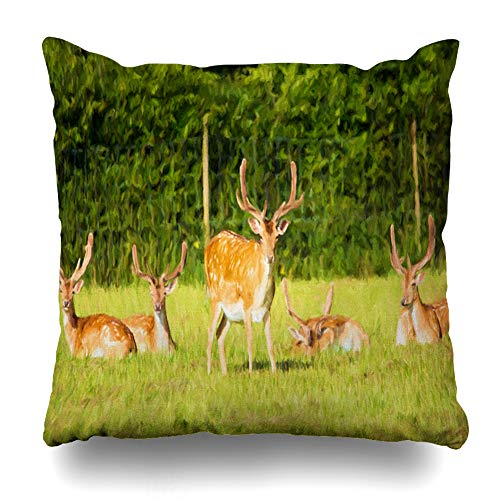 Ahawoso Throw Pillow Cover Forrest Brown Herd Red Deer New Forest Hants Hampshire England Like Green Buck Design Decorative Pillowcase Square Size 16
