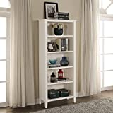Briarwood Home Decor White-finish Wood Bookcase White - White Finish