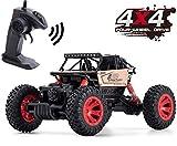 Toyard RC Cars for Boy/Girl - Remote Control Car Road Vehicle Toys for Boy 1: 16 Racing Car 4 WD Rally RC Car Rock Crawlers for Boys/Girls