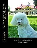 Gabriel Learns History at Mount Vernon, Lynn B Sauls, 0989321649