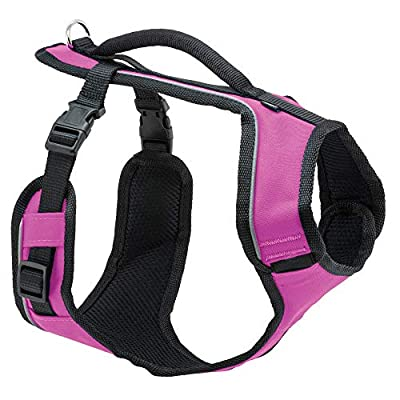 PetSafe EasySport Dog Harness, Adjustable Padded Dog Harness with Control Handle and Reflective Piping