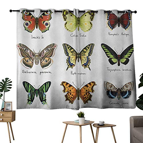 NUOMANAN Window Curtains Butterfly,Watercolor Style Spring Insects Urania Helius Saturnia Pavonia Animal Design,Multicolor,Thermal Insulated Room Darkening Window Shade ()