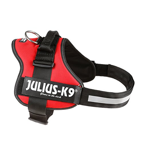 Trixie Harnais Power Julius-K91 / L 66-85 cm Rouge