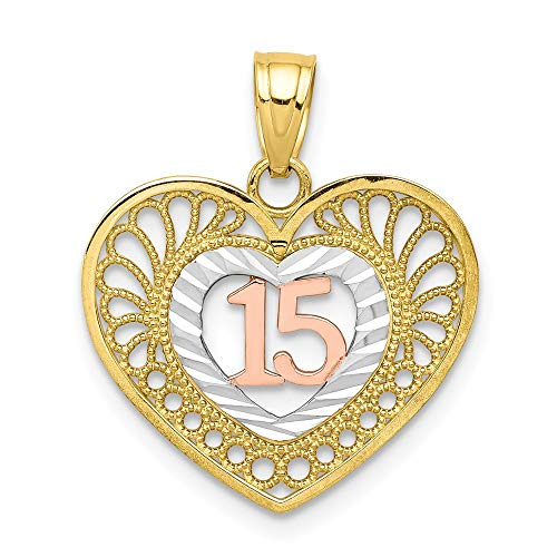 10k Two Tone Yellow Gold White Sweet 15 Heart Pendant Charm Necklace Love Fine Jewelry Gifts For Women For Her -