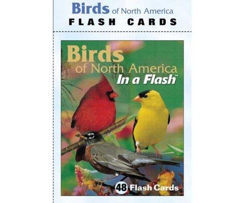 Impact Photographics IMP2FLC Flash Cards Birds North America