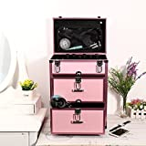Professional 4-wheel Rolling 4 in 1 Makeup Train Cosmetic Case Lighted Makeup Case Rolling Organizer Travel [US STOCK] (Pink)