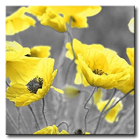 Large square yellow poppy flowers in field canvas picture floral large square yellow poppy flowers in field canvas picture floral print 34quot mightylinksfo