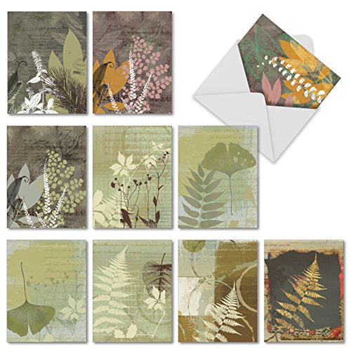 ves: 10 Assorted Blank All-Occasion Note Cards Featuring Silhouette Fern Designs Against Collage Background, w/White Envelopes. (Leaf Boxed)