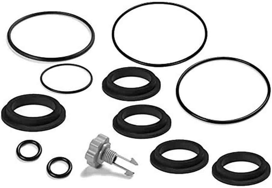 Intex Replacement Repair Set for Sand Filter Pumps, Air Release Valve & O-Rings