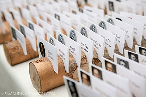 1 Gold Escort Card Holders Made From a Fallen Tree -