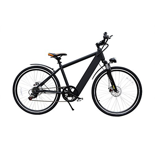 NAKTO Electric Bike Ebike for Women and Men with 36V 10Ah Lithium Battery