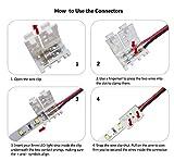 3528 2835 2 Pin 8mm LED Strip Connector - DIY Strip