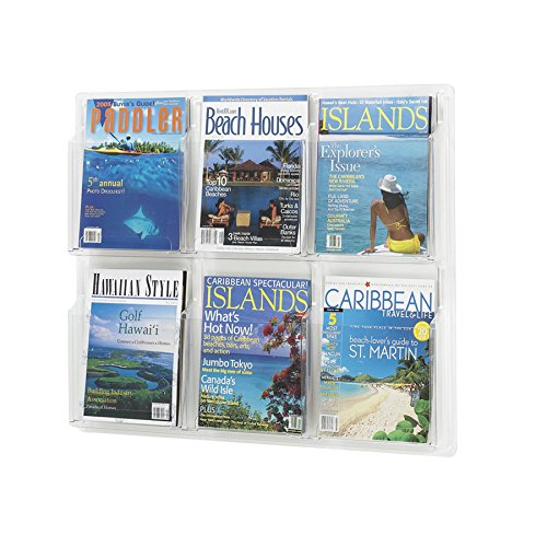 (Safco Products 5607CL Reveal Literature Display, 6 Magazine, Clear)