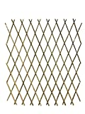 Master Garden Products BFF-72P Expandable Bamboo Poles Trellis L x 72'' H, yellow