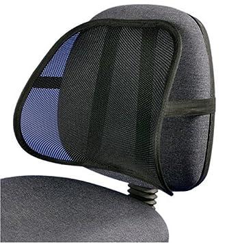 Amazon.com: Cojín de soporte lumbar de malla fresca y ...