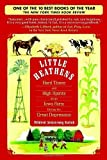 Little Heathens: Hard Times and High Spirits on an Iowa Farm During the Great Depression Paperback April 29, 2008