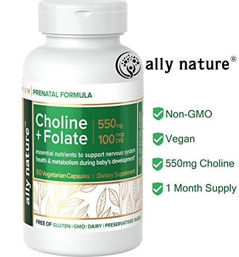 Ally Nature Prenatal Choline Bitartrate Supplement 550mg - Vegan Folate Supplements For Pregnancy - Prenatal Multivitamin For Pregnant Women - Promote Baby Brain Function & Development - 60 Caps