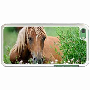 Lmf DIY phone caseCustom Fashion Design Apple iphone 5c Back Cover Case Personalized Customized Diy Gifts In Curious WhiteLmf DIY phone case