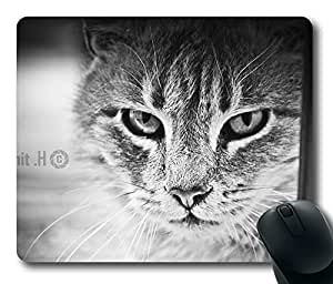 Cat 64 Mouse Pad Oblong Shaped Mouse Mat Design Natural Eco Rubber Durable Computer Desk Stationery Accessories Mouse Pads For Gift