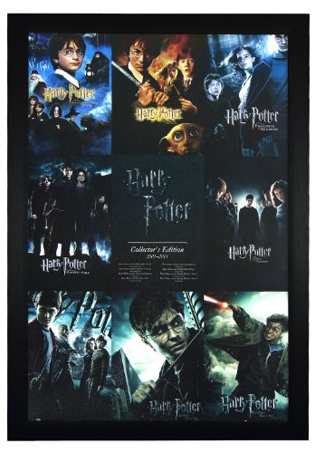 Harry Potter Collector's Edition 2001-2011- 24x36 Framed Mov