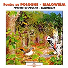 Forests of Poland - Bialowieja