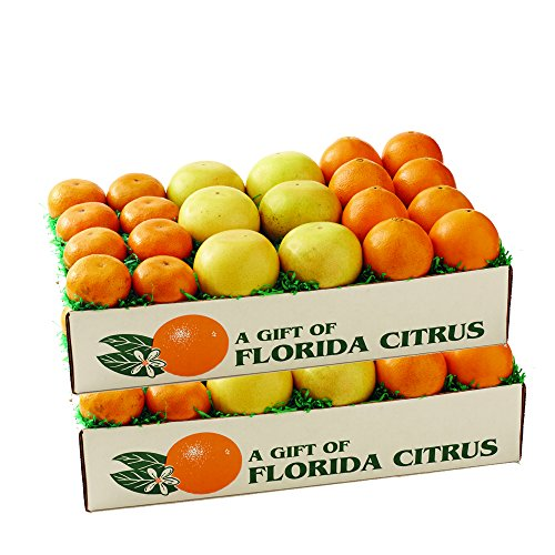 Florida Oranges, Red Grapefuit, Tangerines - Triple Box- 2 trays