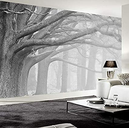 Amazon Com Pbldb Custom 3d Wall Mural Retro Modern Black And White