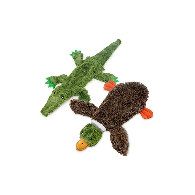 2-in-1 Fun Skin Stuffless Dog Squeaky Toy by Best Pet Supplies